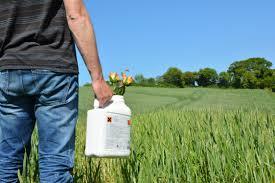Produits phytosanitaires naturels, les avantages à connaître